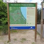 parc_natural_de_salbufera_de_mallorca_03